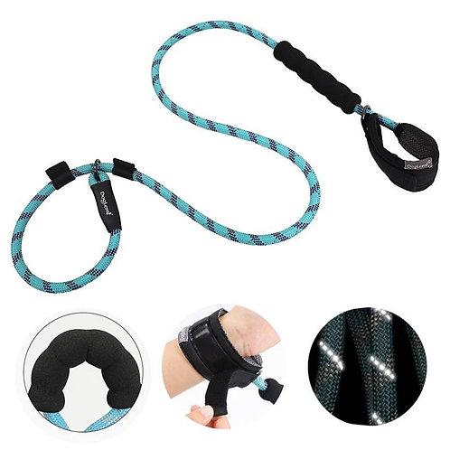 רצועת אילוף עם שחרור מהיר - ידיים חופשיות