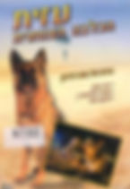 עזית הכלבה הצנחנית.jpg