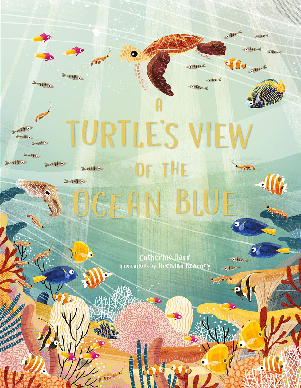A Turtle's view of the ocean blue