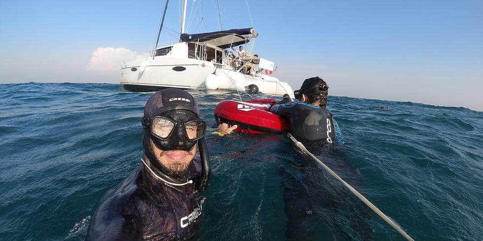 קורס צלילה חופשית AIDA1