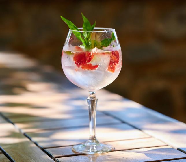 _gin & tonic.jpg