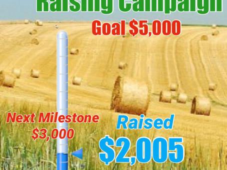 Hay Raising Campaign Update!😎