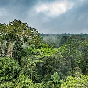 Ecuador - Galapagos, Andes and Amazon