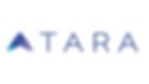 Tara_AI_Company_Logo.png