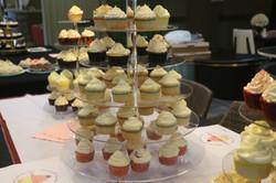 whole lotta cupcakes