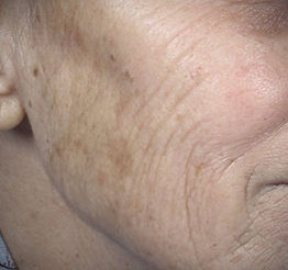 picoway skin