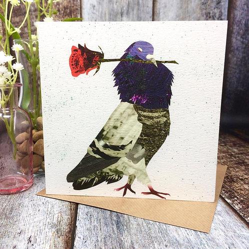 Be My Bird
