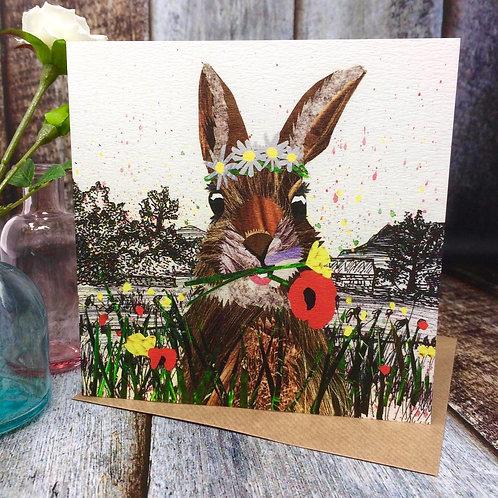 Meadow Rabbit