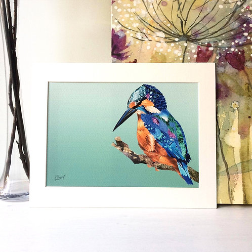 Kingfisher A4 Mounted Print