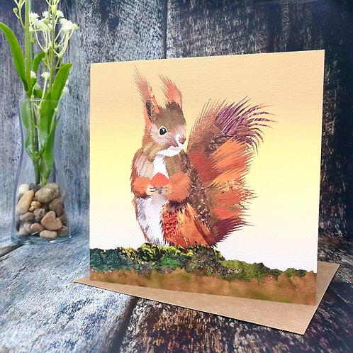 Red Squirrel Fine Art