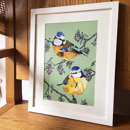 Blue Tit Blossom Mounted Print