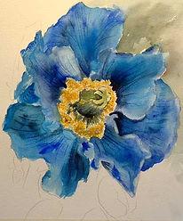 Blue Poppies2.jpg