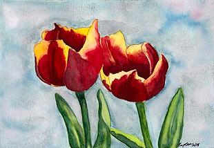 Red & Yellow Tulips.jpg