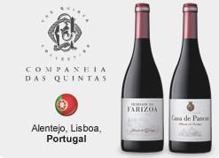 Wine - Assinatura de Vinhos