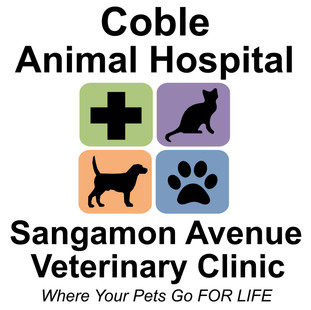 Coble Animal Hospital & Sangamon Avenue Veterinary Clinic