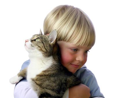 Volunteering With Your Pet