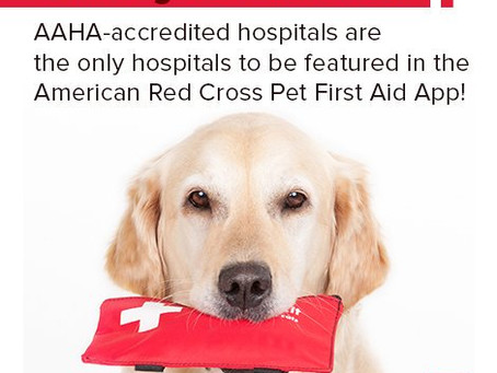Pet First Aid - There's an app for that