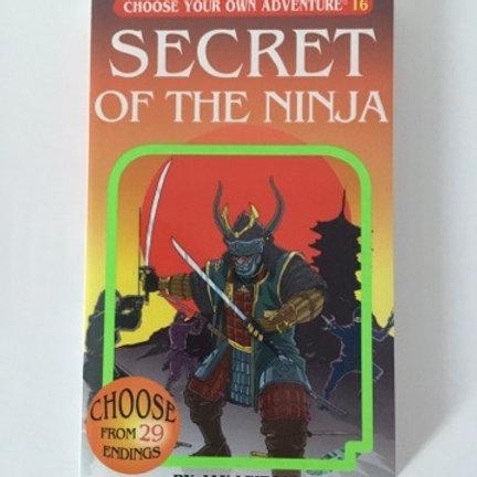 Choose Your Own Adventure - Secret of the Ninja