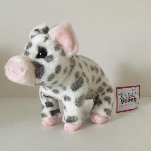 Douglas Pauline Spotted Pig #1890