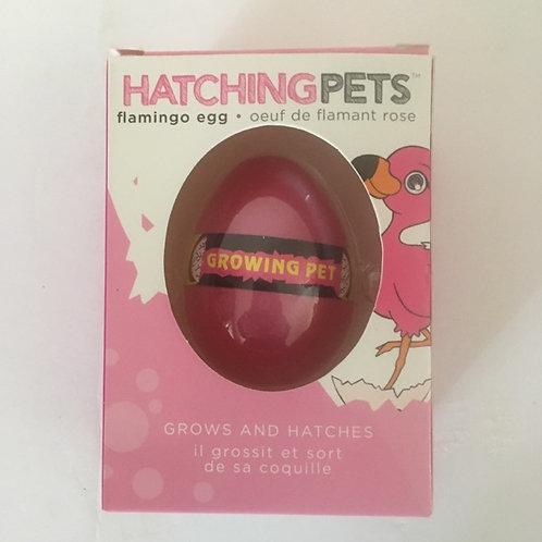GiftCraft Hatching Flamingo Egg Pet