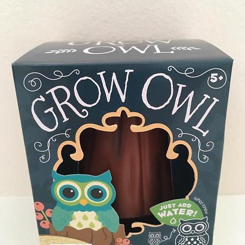 Grow Owl