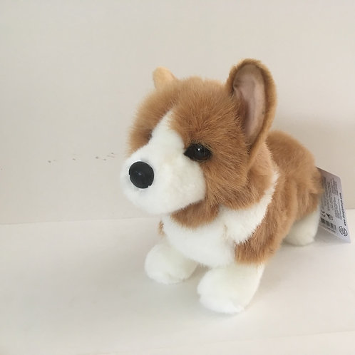 Douglas Louie Corgi Dog