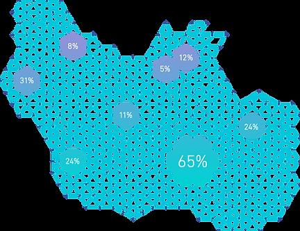 DNA検査のイメージ図