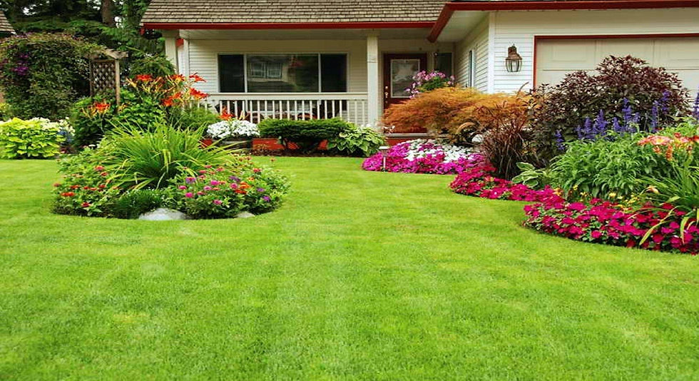 884262_landscaping-ideas-with-designs-ba