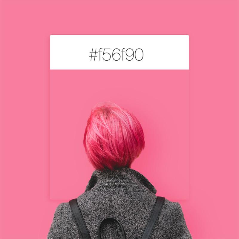 SeeDesine Pinterest Color Inspiration: pink
