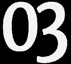 03 Grey Icon