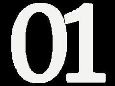 01 Grey Icon
