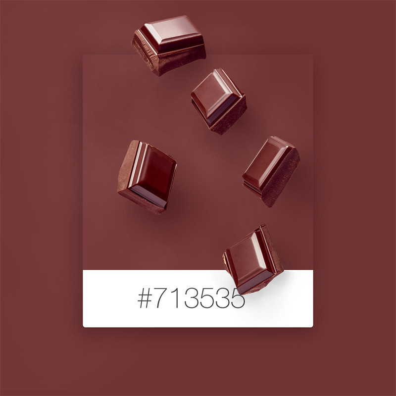 SeeDesine Pinterest Color Inspiration: chocolate