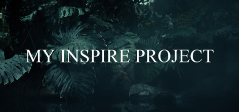 My Inspire Project