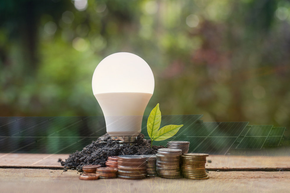 %20LED%20bulb%20with%20growing%20plant%20-%20Concept%20of%20saving%20energy_edited.jpg