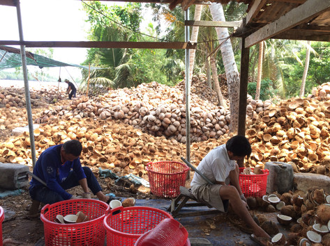 Coconut procession 1.JPG