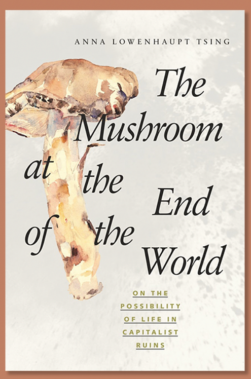 The Mushroom at the End of the World - Paperback (08 Jun 2021)