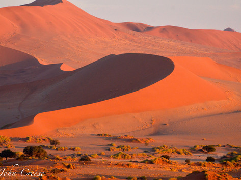 Amazing Dune