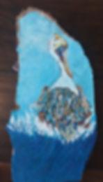 PelicanJangula.jpg