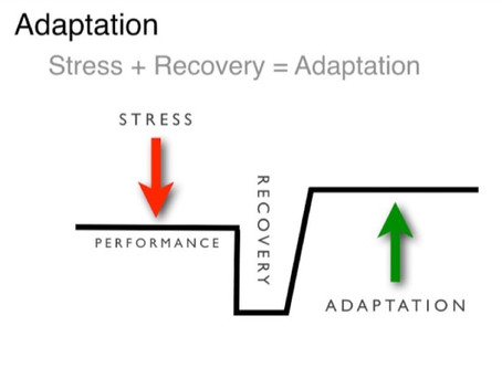 THE RELATIONSHIP BETWEEN TRAINING AND RECOVERY and it's importance in ensuring positive ADAPTATION