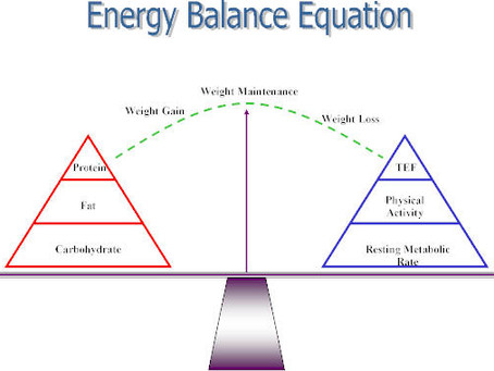 THE DIFFERENCE BETWEEN A CALORIE DEFICIT, BASELINE & SURPLUS