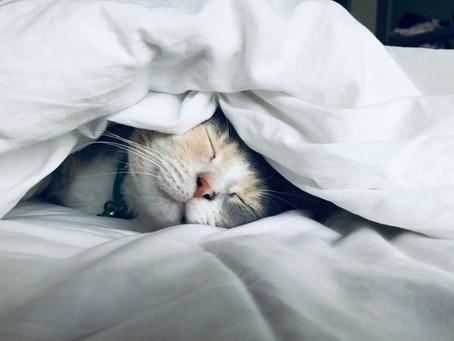 IMPROVING SLEEP QUALITY