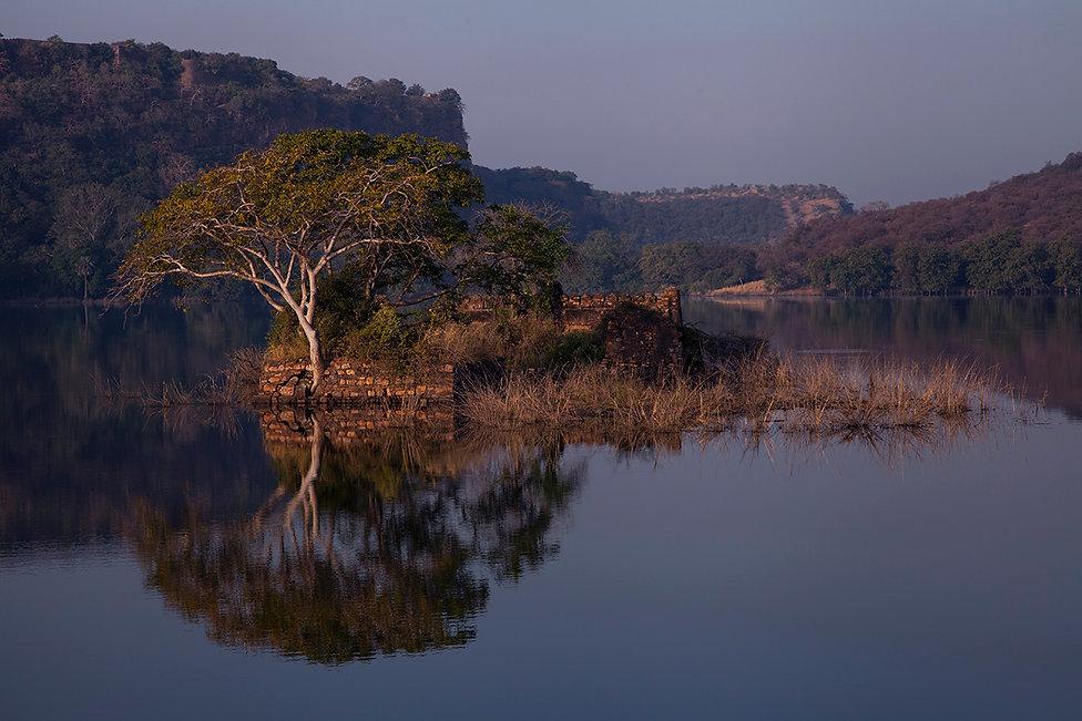 ranthambore lake