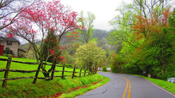 Spring Photo Courtesy of Linda Barde