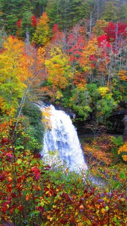 Dry Falls Photo Courtesy of Linda Barden