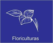 Floricultura.jpg