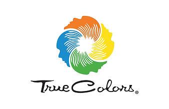 VirtualTeam Building, True Colors assessment, COVID-19 team building, online team bulding