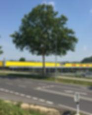 Siegendorf.jpg