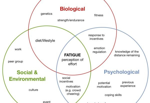 Thinking about the Biopsychosocial Model of Fatigue