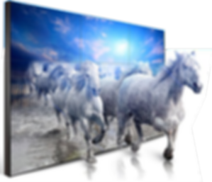 VIDEO WALL HORSE.png