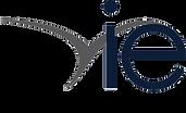 Png Vie Logo.png